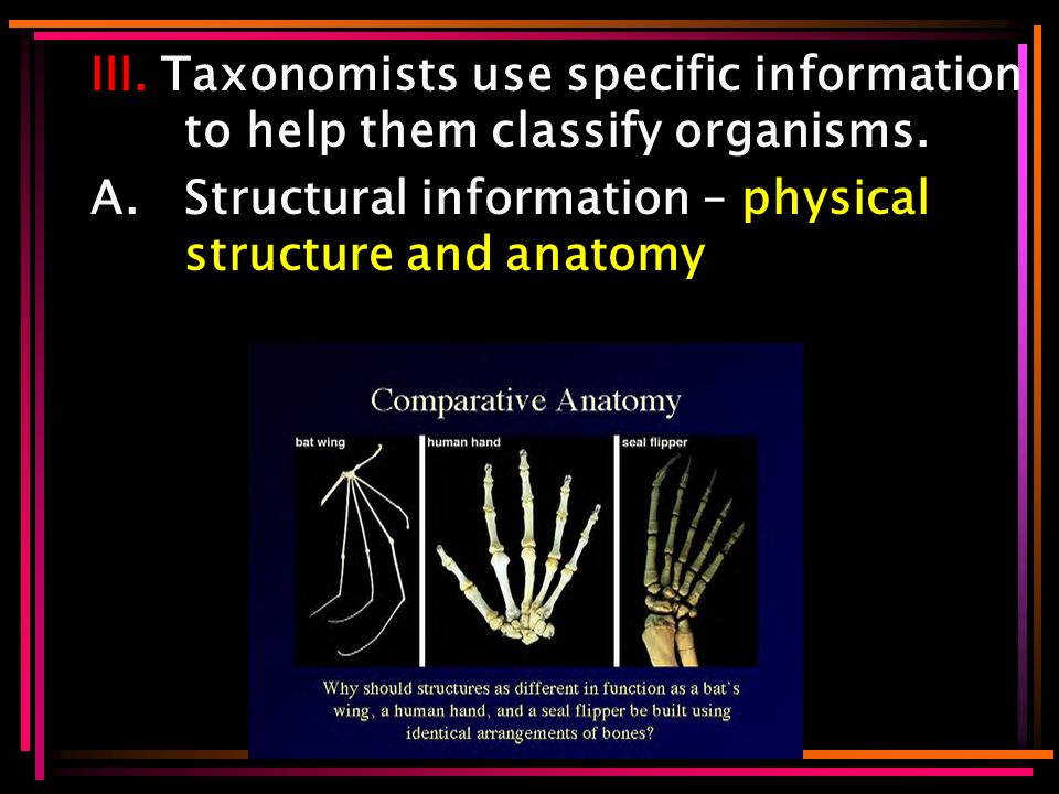 III. Taxonomists use specific information to help them classify organisms.