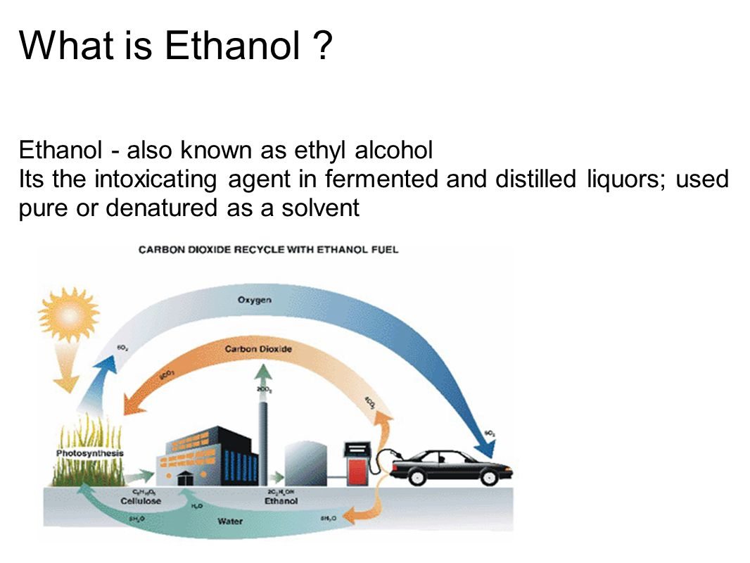What Is Ethanol >> What Is Ethanol Ethanol Also Known As Ethyl Alcohol Its The