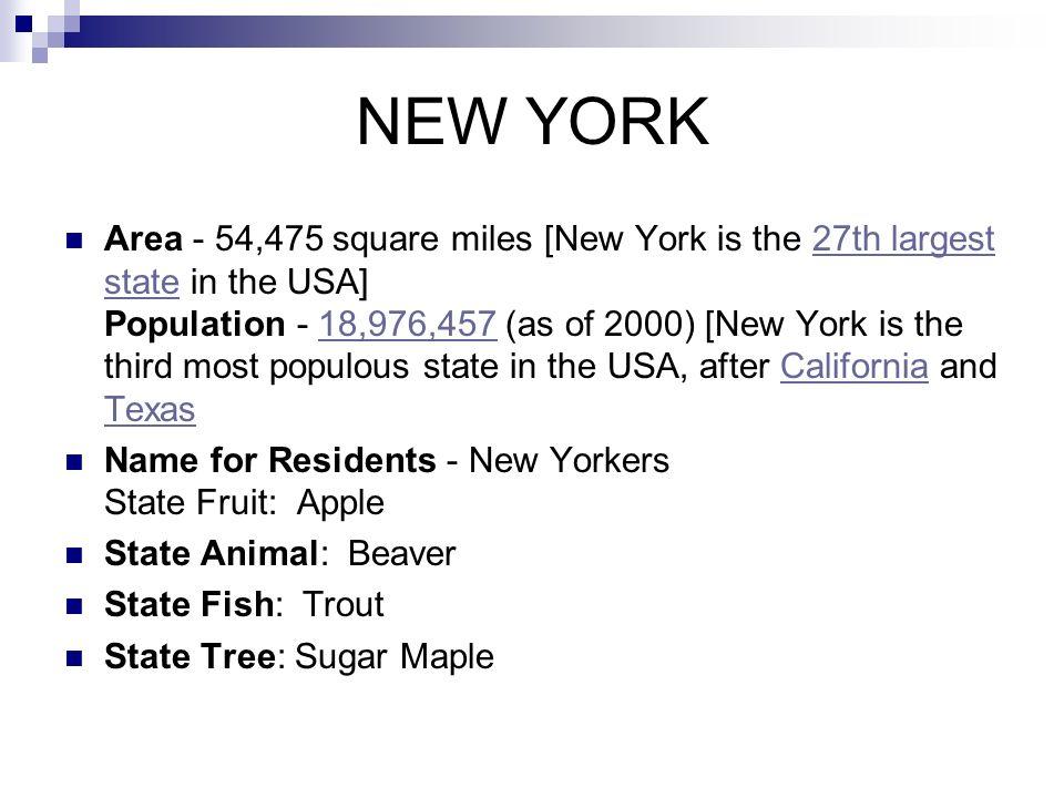 Location New York Capital Albany State Abbreviation Postal Code