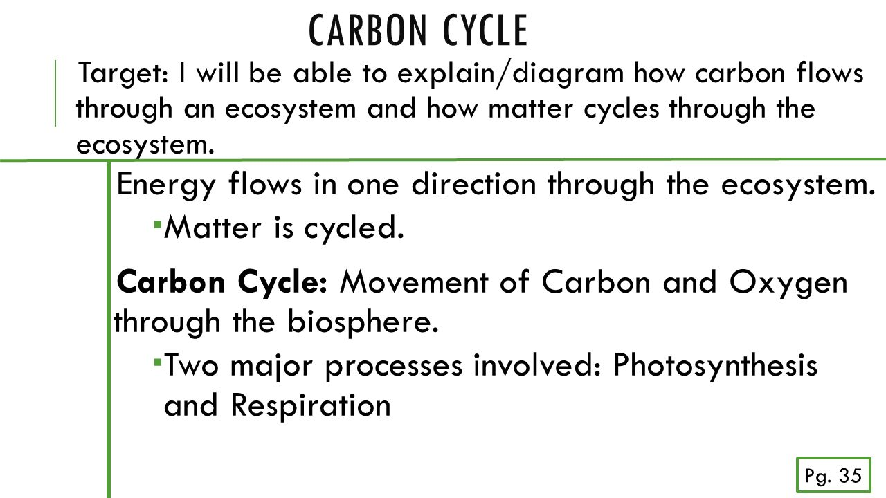 Carbon cycle backing up off sides quarter back carbon cycle energy 3 carbon cycle energy flows ccuart Gallery