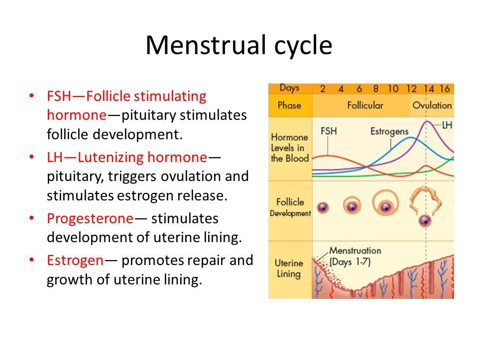 Sex Hormones Triggering Ovulation