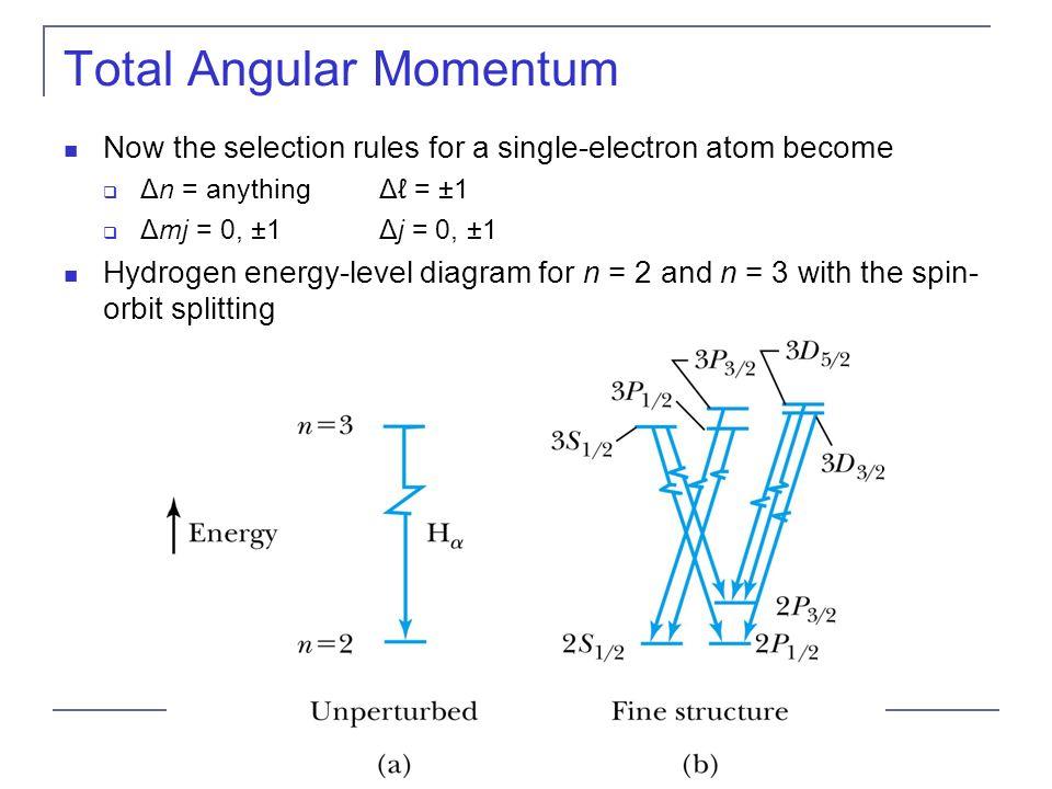Total Angular Momentum L L Z S S Z J And J Z Are Quantized