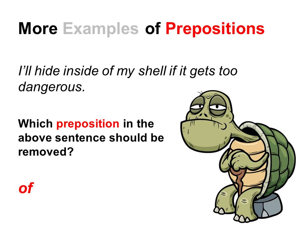 More Examples of Prepositions I'll hide inside of my shell if it gets too dangerous.