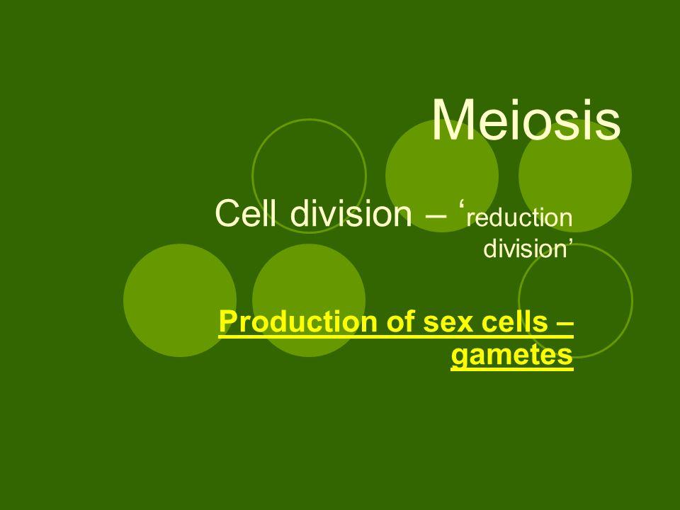 Naked production of sex cells bdsm comics bdsm