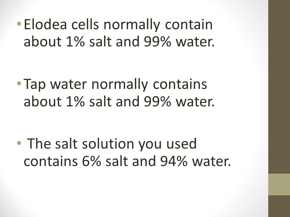 Elodea cells normally contain about 1% salt and 99% water