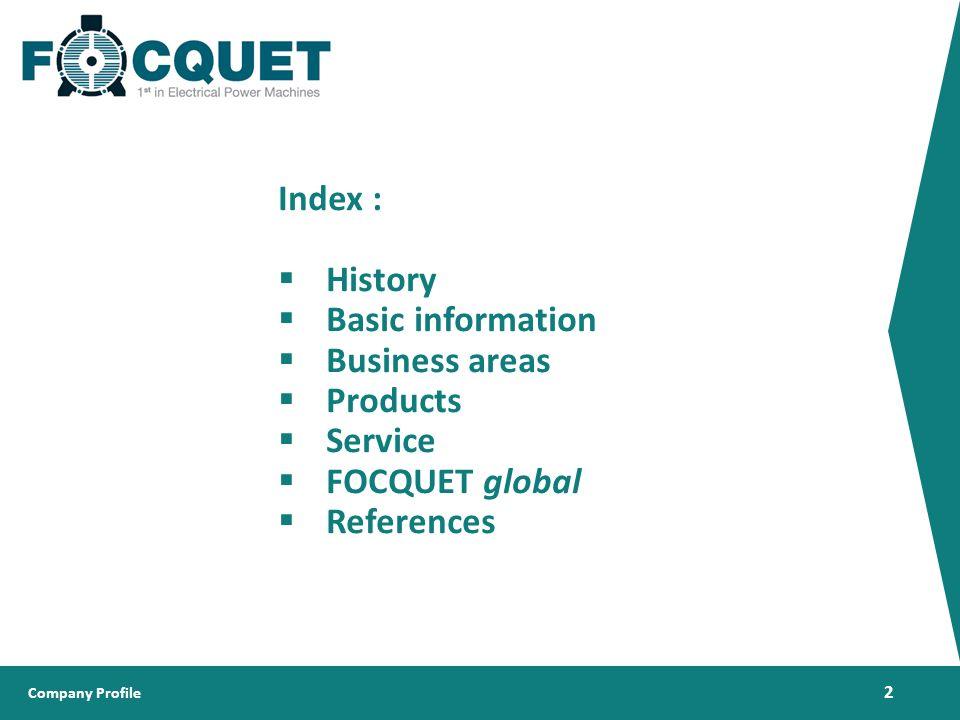 05f43eabf4b4 Company Profile © Company Profile Since ppt download
