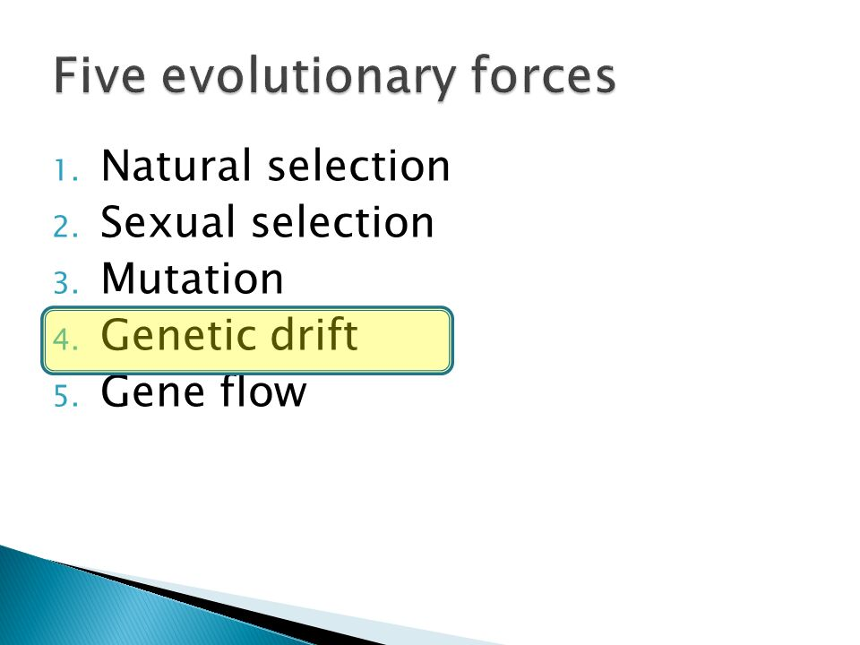 Sexual selection evolutionary force