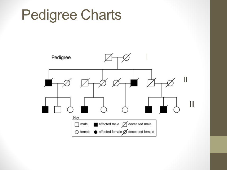Pedigree Charts The Family Tree Of Genetics Learning Objective I