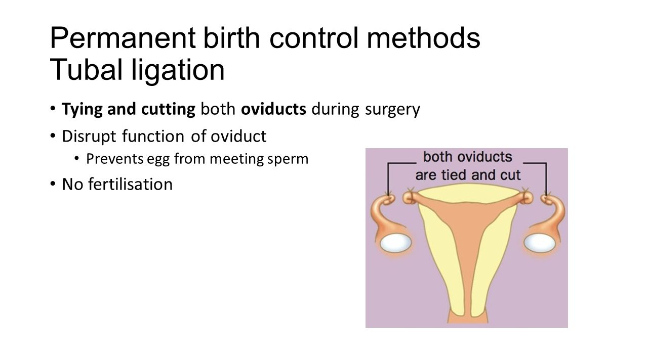 the importance of birth control Birth control: birth control, the voluntary limiting of human reproduction, using such means as sexual abstinence, contraception, induced abortion, and surgical birth control encompasses the wide range of rational and irrational methods that have been used in the attempt to regulate fertility, as well as the.