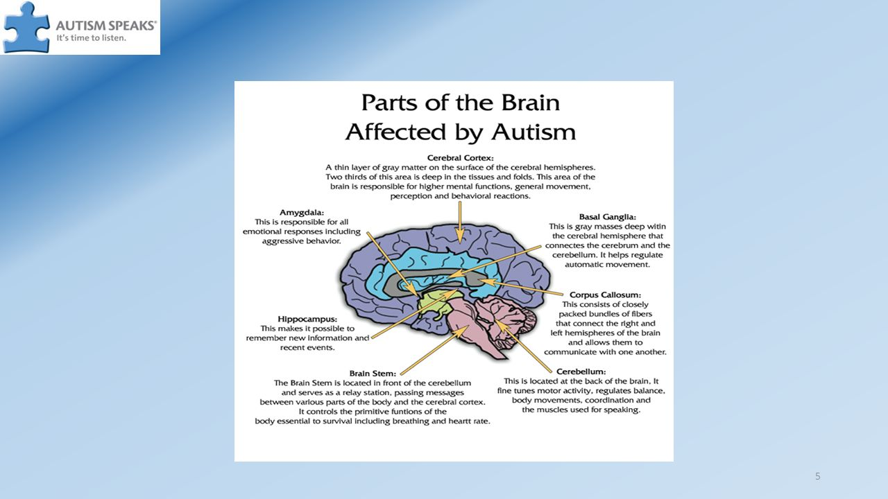 1. Autism Spectrum Disorder and Autism are both terms used to ...