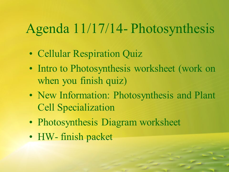 Agenda 111714 photosynthesis cellular respiration quiz intro to 1 agenda 111714 photosynthesis cellular respiration quiz intro to photosynthesis worksheet work on when you finish quiz new information photosynthesis ccuart Image collections