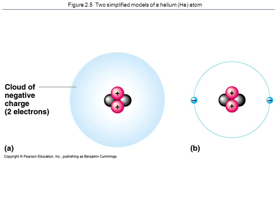 Figure 21 the hierarchy of biological order from atom to organism 3 figure 25 two simplified models of a helium he atom ccuart Gallery