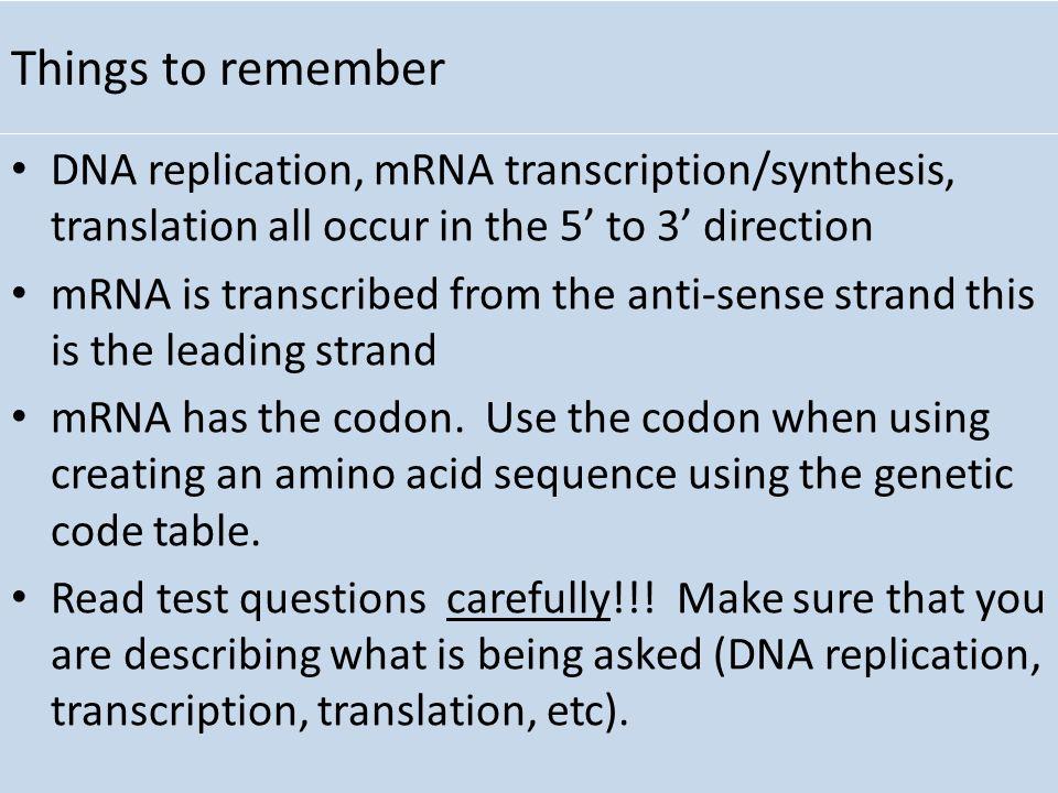 2.7 DNA replication, transcription and translation Essential Idea ...