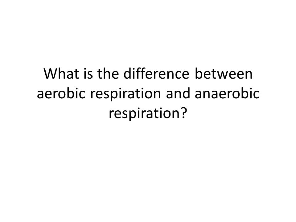 What is the difference between aerobic respiration and anaerobic respiration
