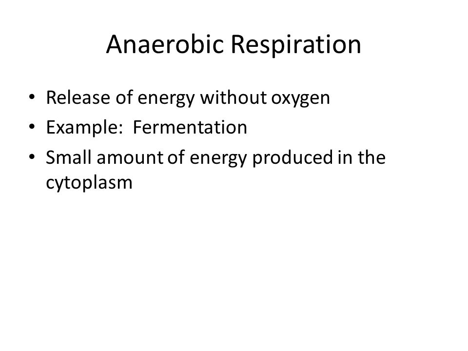 Anaerobic Respiration Release of energy without oxygen Example: Fermentation Small amount of energy produced in the cytoplasm