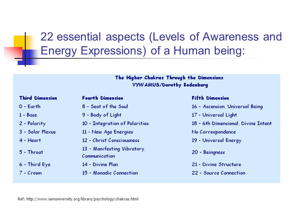 22 essential aspects (Levels of Awareness and Energy Expressions) of a Human being: Ref: http://www.iamuniversity.org/library/psychology/chakras.html
