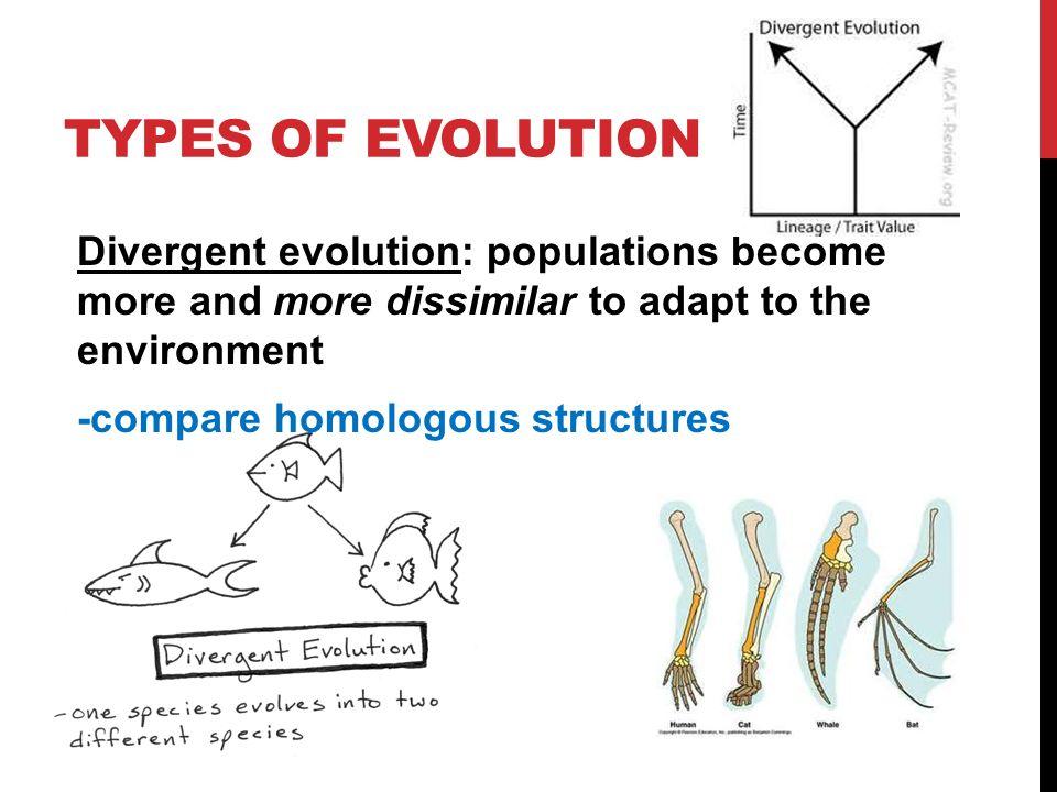 Image result for divergent evolution definition
