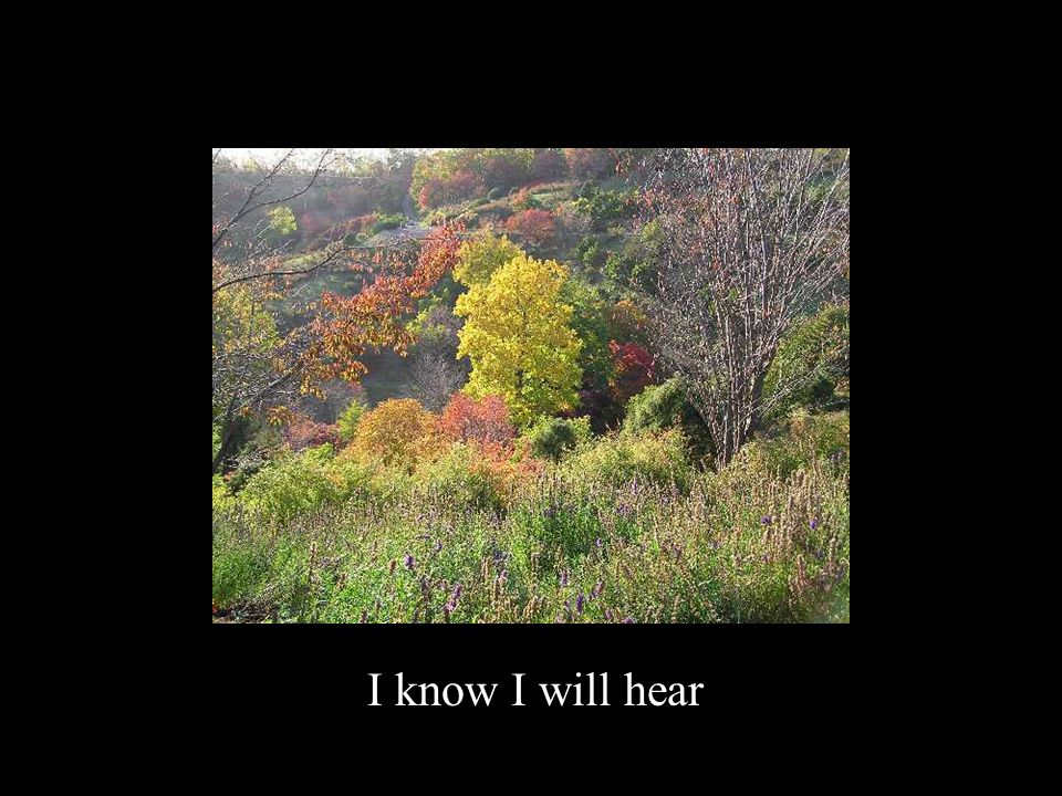 I know I will hear