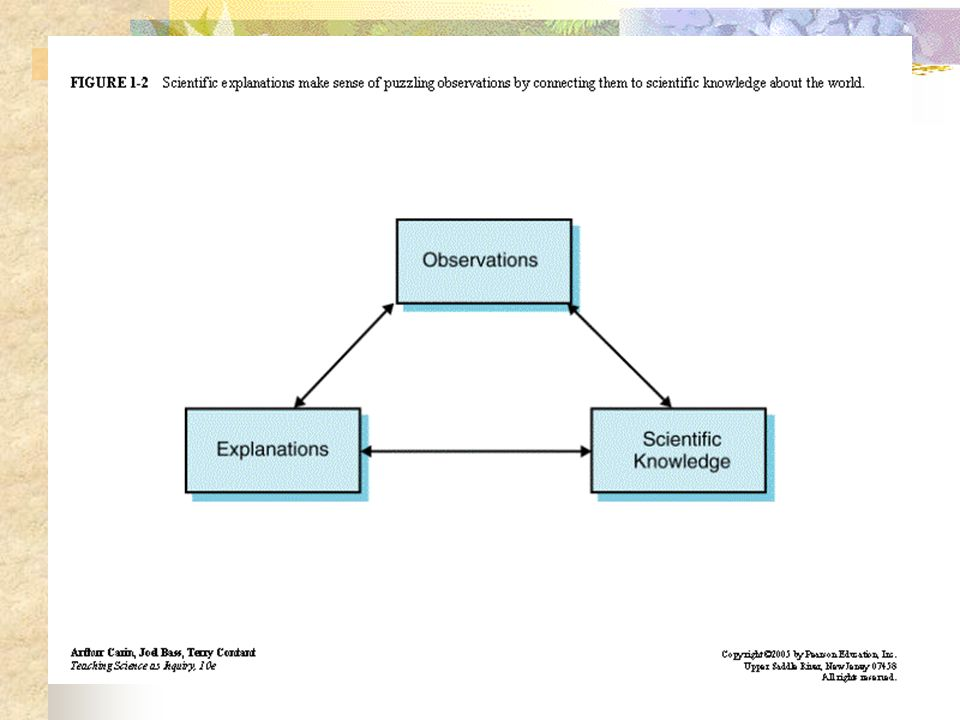 Chapter 1 Children Science And Inquiry Why Should Children Learn