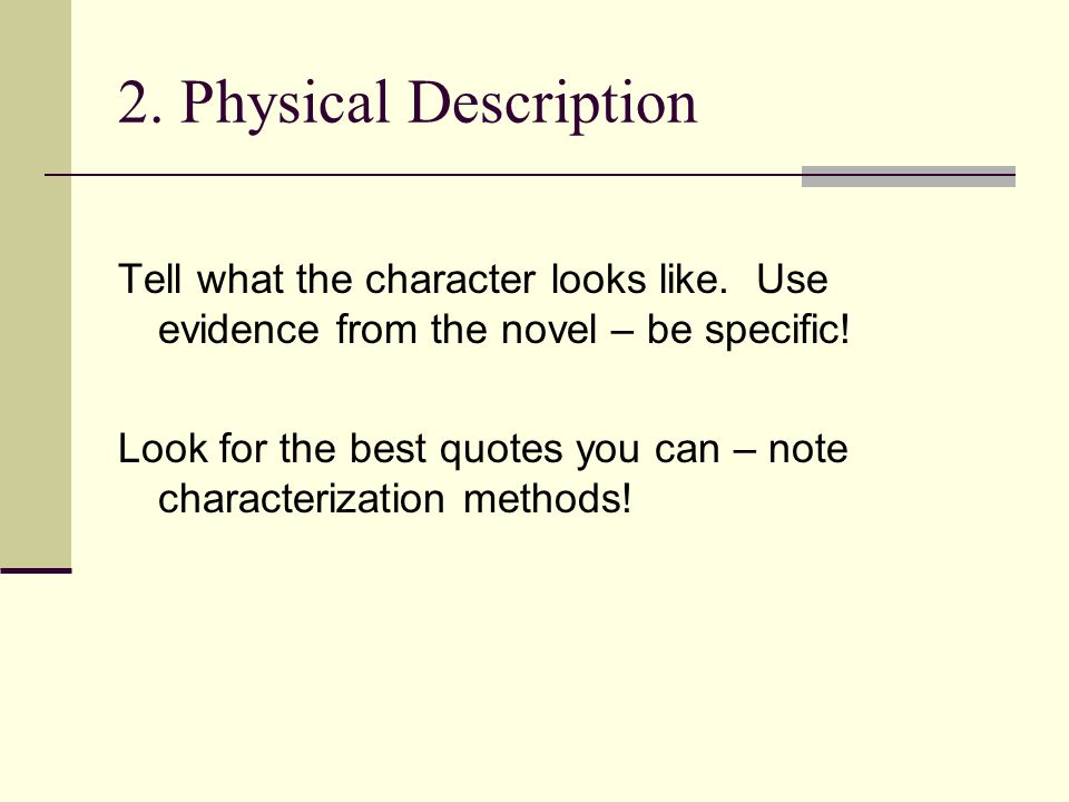 what is a character sketch essay