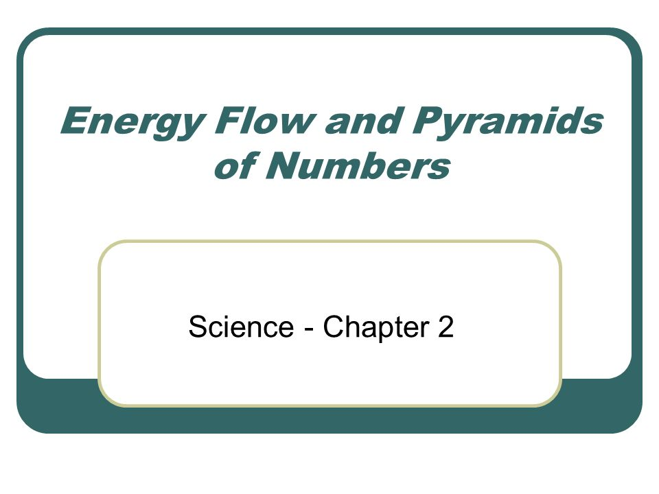 Energy Flow and Pyramids of Numbers Science - Chapter ppt download