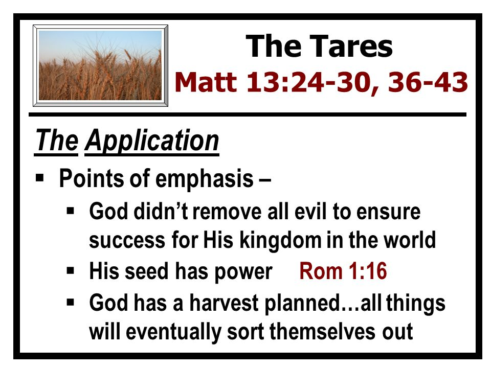 The Application  Points of emphasis –  God didn't remove all evil to ensure success for His kingdom in the world  His seed has power Rom 1:16  God has a harvest planned…all things will eventually sort themselves out The Tares Matt 13:24-30, 36-43