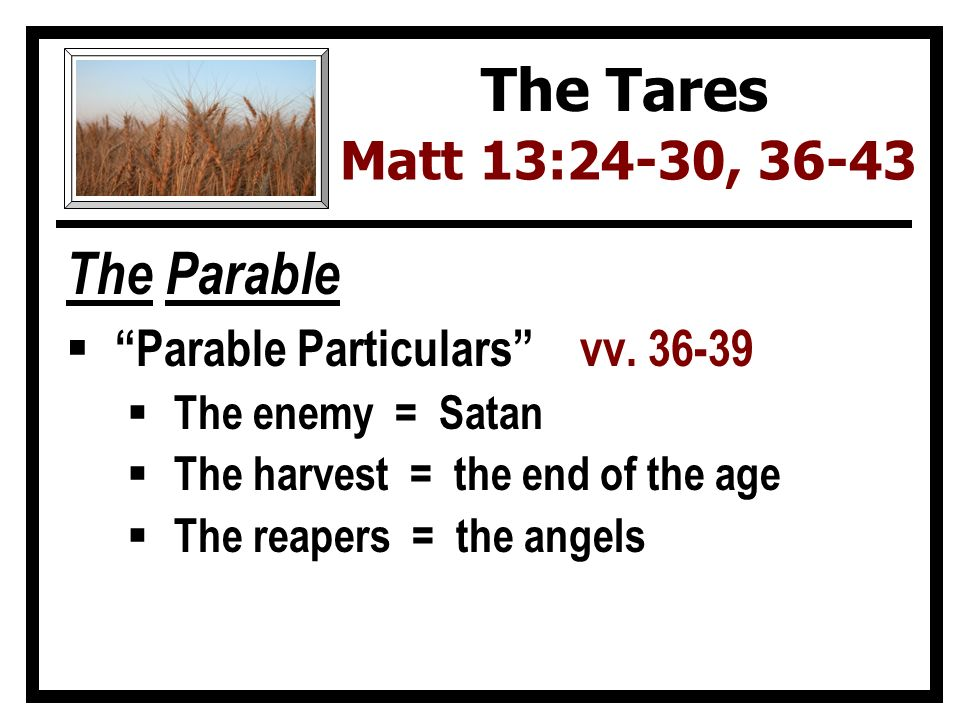 The Parable  Parable Particulars vv.