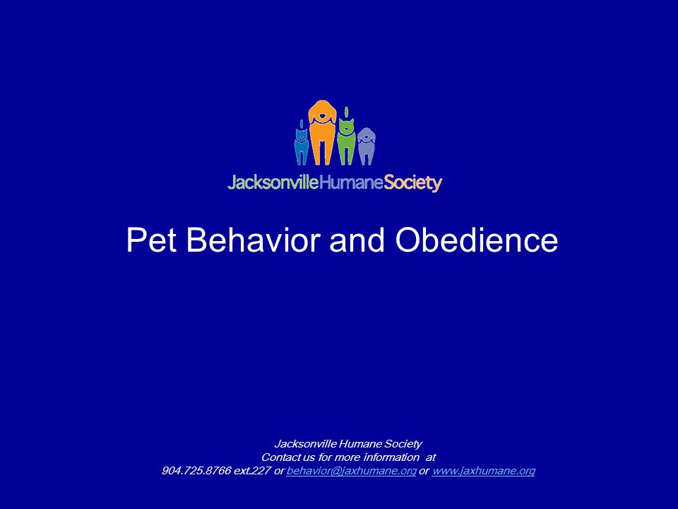 Pet Behavior and Obedience Jacksonville Humane Society