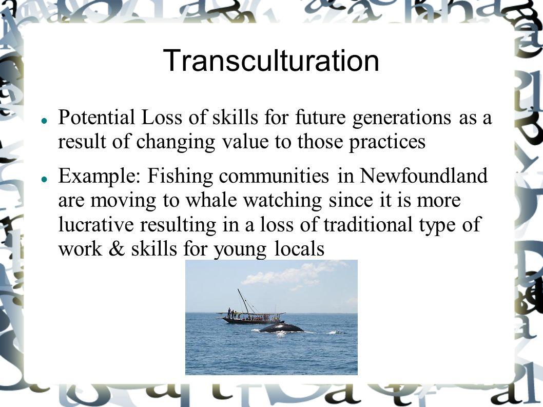 Transculturation – minkelblog.