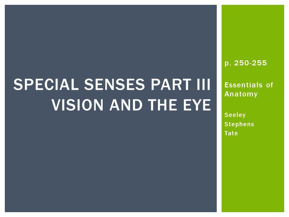 P Essentials of Anatomy Seeley Stephens Tate SPECIAL SENSES PART III ...