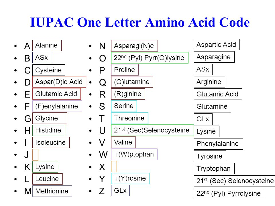 20 Amino Acid One Letter Code.1 Discussion Practical 1 Features Of Major Databases