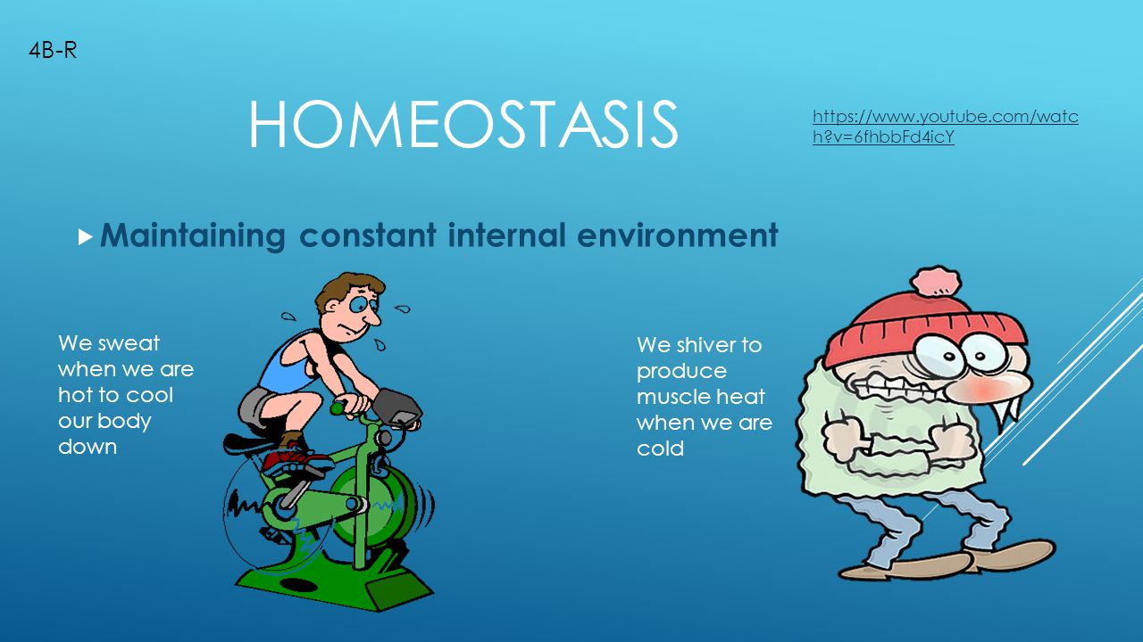 maintaining constant conditions in the body essay Homeostasis is the process through which an organism maintains certain internal conditions, such as a human body's internal mechanisms maintaining body temperature at a specific level to prevent over or under heating this process is important because it makes it.