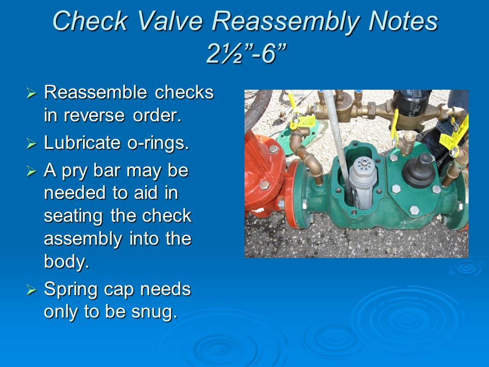 Check Valve Reassembly Notes 2½ -6  Reassemble checks in reverse order.