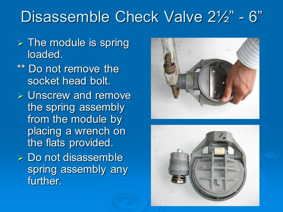 Disassemble Check Valve 2½ - 6  The module is spring loaded.
