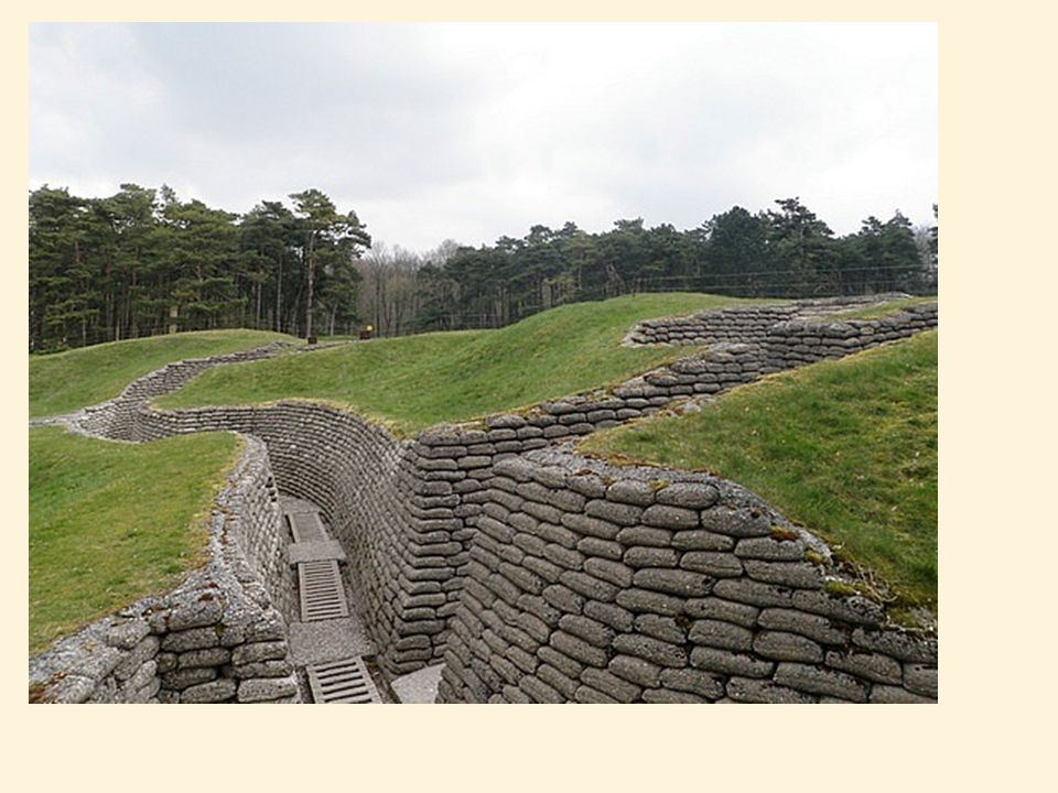 Trench Warfare Lesson starter: 1 Why did soldiers of both sides dig