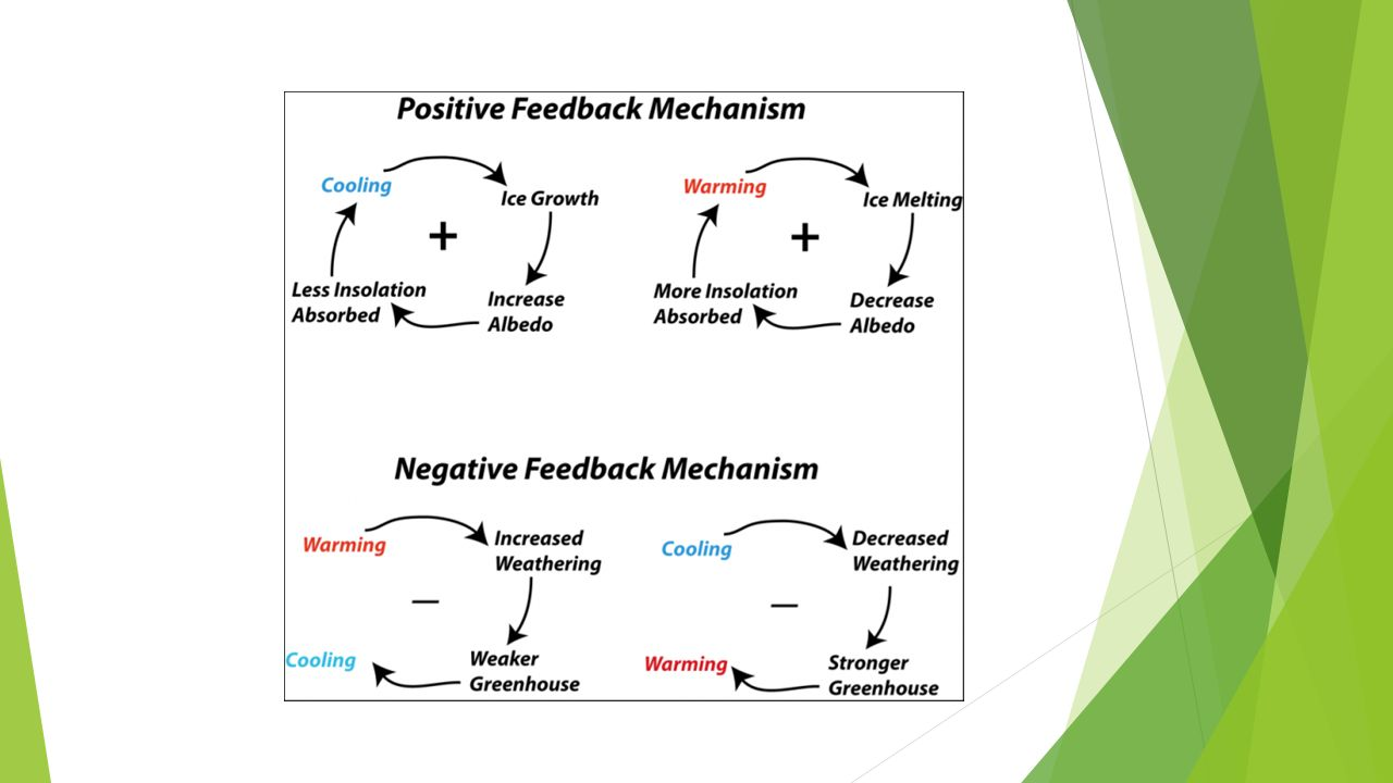 What are climate change feedback loops