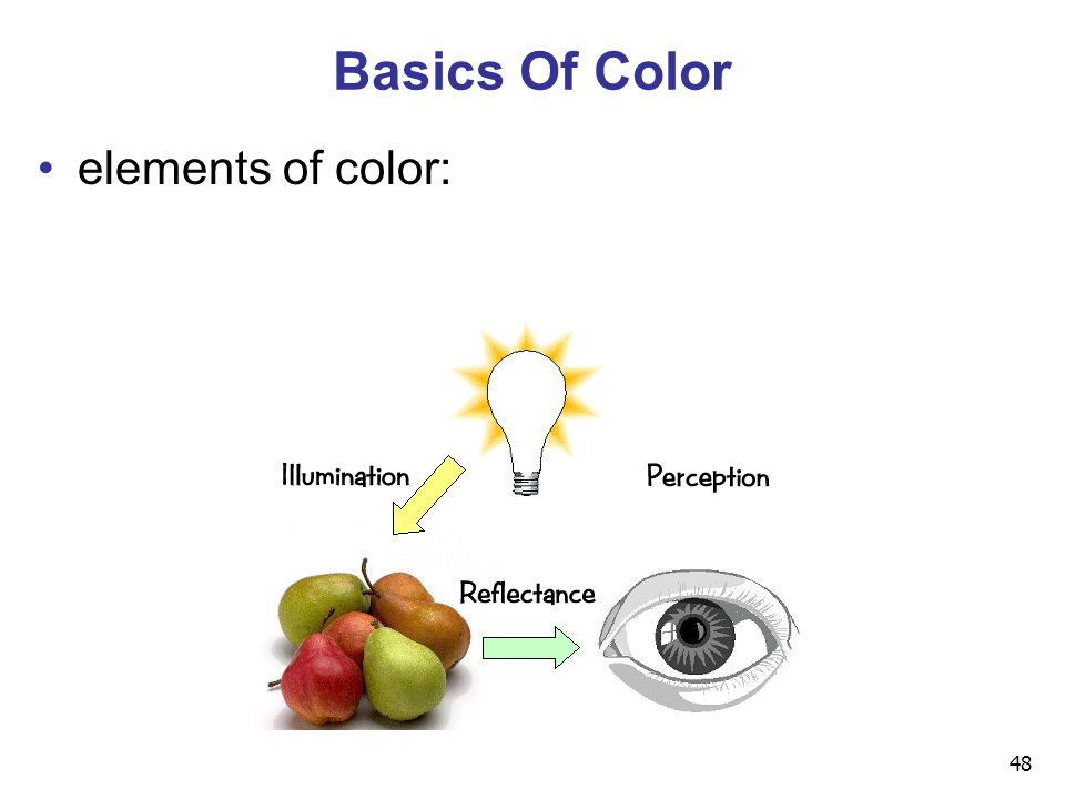 48 Basics Of Color elements of color: