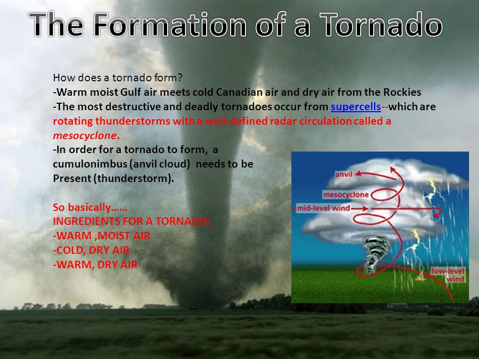 how does a tornado form? -warm moist gulf air meets cold canadian