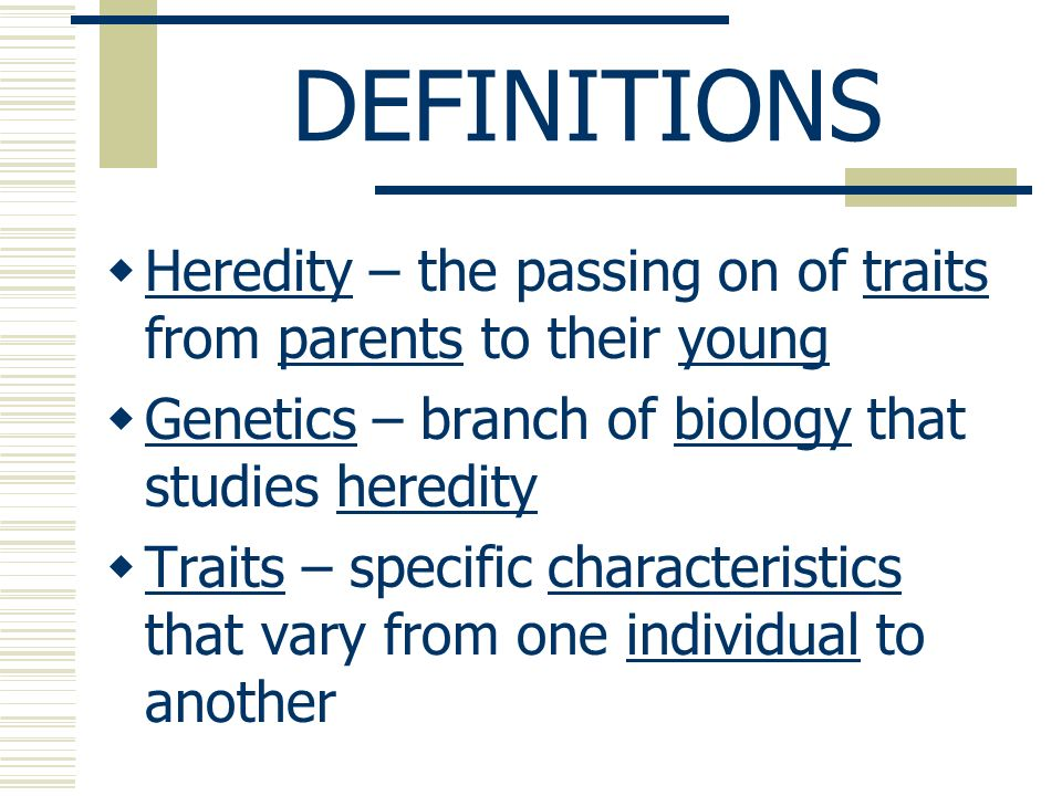 GENETICS DOMINANT/ RECESSIVE NOTES  DEFINITIONS  Heredity – the