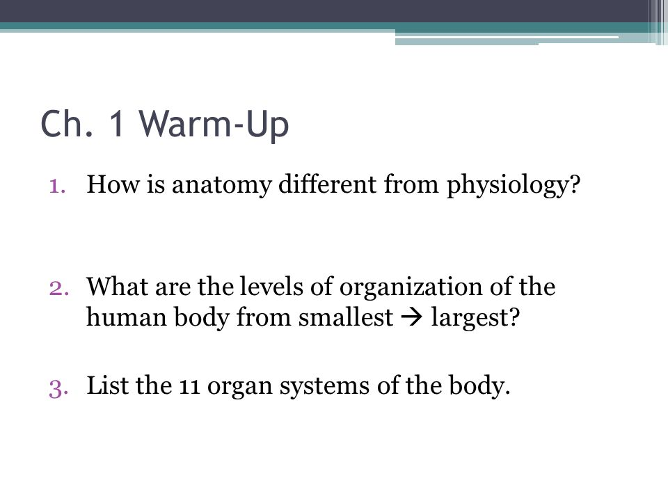 Ch. 1 Warm-Up 1.How is anatomy different from physiology? 2.What are ...