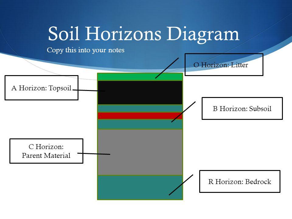 Soil Horizon Horizon Horizon Is A Side Profile Of The Layers Of