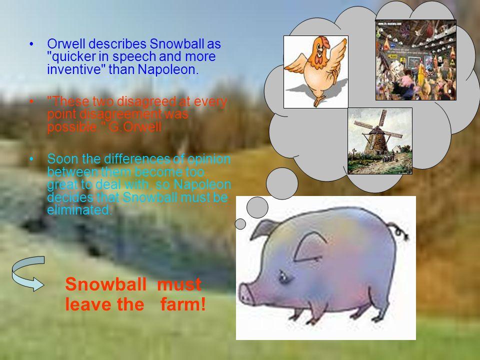 snowball napoleon