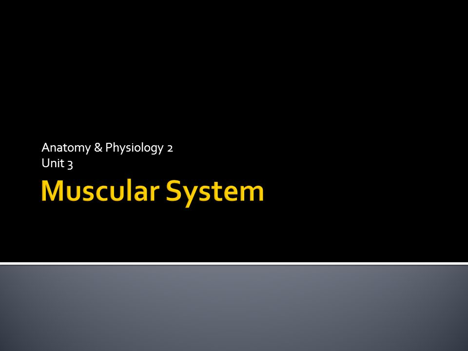 Anatomy & Physiology 2 Unit 3.  Skeletal muscles:  Muscles that ...