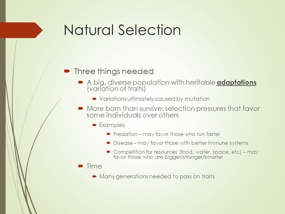 Similarities between sexual selection and natural selection