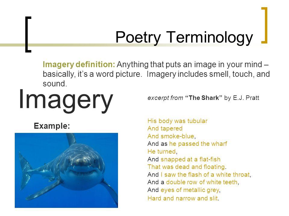 the shark ej pratt questions