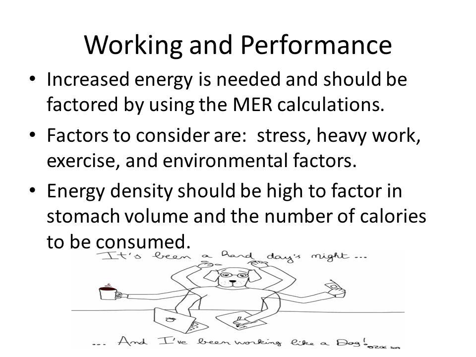 Gestation (pregnancy) In week 5, increase the energy intake