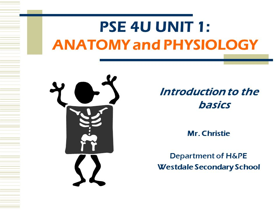PSE 4U UNIT 1: ANATOMY and PHYSIOLOGY Introduction to the basics Mr ...