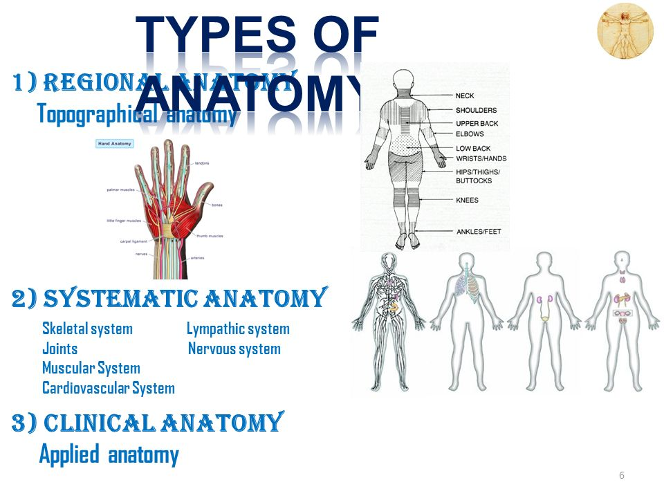 Kaan Ycel Md Phd16ptember2014 Tuesday Definition Of