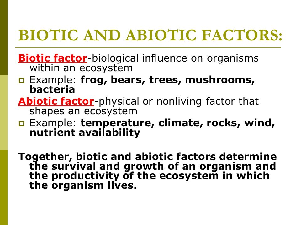 Abiotic factors examples images resume cover letter examples.