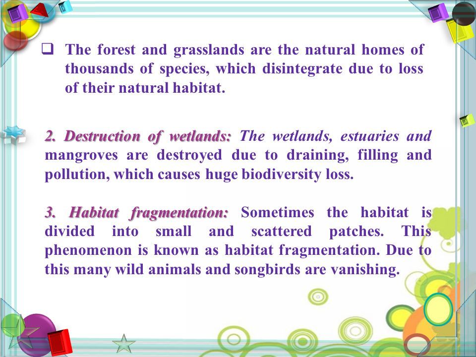  The forest and grasslands are the natural homes of thousands of species, which disintegrate due to loss of their natural habitat.
